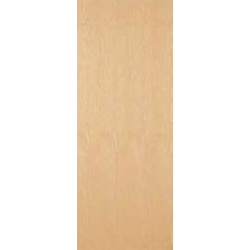 Ash Veneer FD30 Fire Door