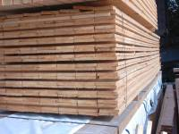 Treated Carcassing 25mm x 200mm (8x1)