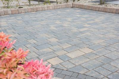 Barleystone Ashford Paving Blocks 50mm (per m2)